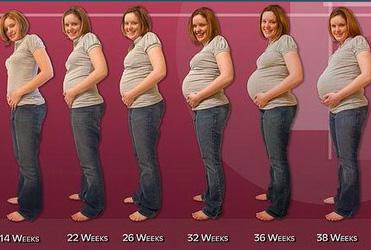 تغییرات بدن طی دوران بارداری